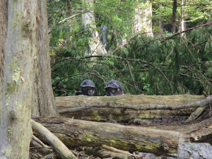 Jungle Attack Delta Force Paintball